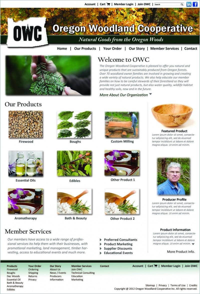 e-commerce, website design, graphic design