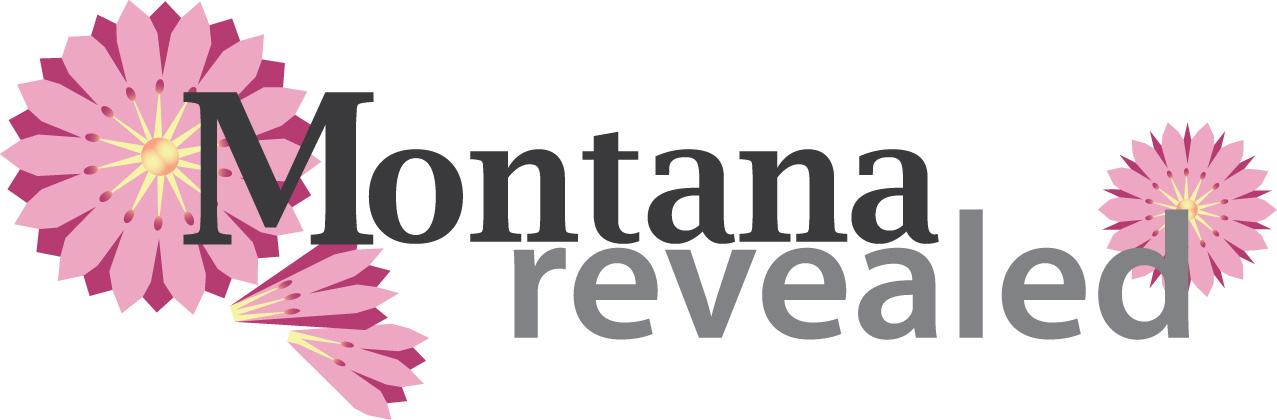 graphic design, logo design, Missoula MT, Denver CO, Missoula Montana, Denver Colorado